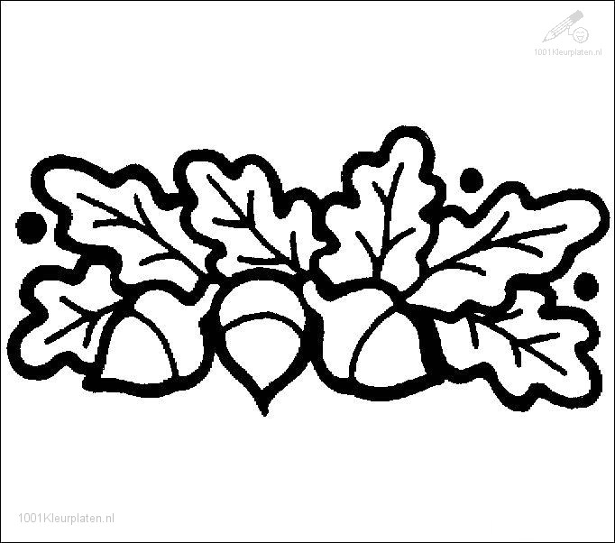 Kleurplaten Herfst Eekhoorn.1001 Kleurplaten Seizoen Herfst Kleurplaat Eikeltjes